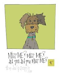 dog quotes the daily quipple