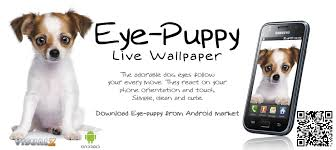 eye puppy live wallpaper