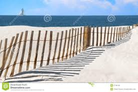 Sand Dune Fence At Seashore Stock Photo Image Of Beautiful Panhandle 5748146