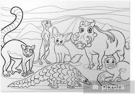 Poster Afrikaanse Dieren Cartoon Kleurplaat Pixers We Leven