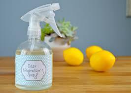 homemade odor neutralizer spray mom 4