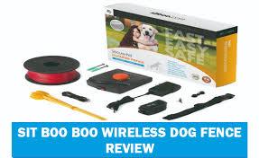 Sit Boo Boo Wireless Dog Fence Reivew