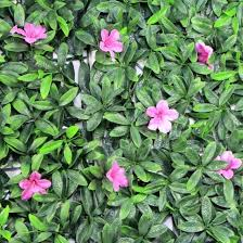 Plastic Grass Screening Plants Garden Ivy Leaf Fence Artificial Hedge China Artificial Plant And Artificial Hedge Price Made In China Com