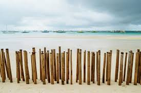 551 Bamboo Fence Beach Photos Free Royalty Free Stock Photos From Dreamstime
