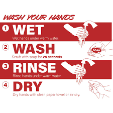 Removable Proper Hand Washing Vinyl Decal