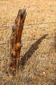Hundred Year Old Cedar Fence Post And Shadow Stock Photo Download Image Now Istock