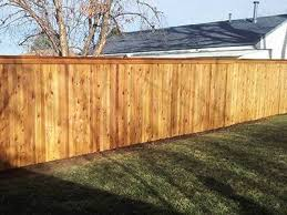 Why Choose Cedar For Building A Fence A Straight Up Fence Company