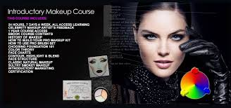 tuition vizio makeup academy and course