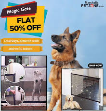 Buy Magic Gate Fences At Flat 50 Off Dog Safety Gate Outdoor Protection Pets