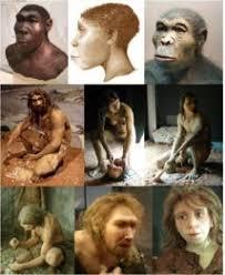 Tres especies de Homo distintas convivieron hace dos millones de años