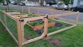 Garden Fence With Weld Wire Diy Garden Fence Fenced Vegetable Garden Cheap Garden Fencing