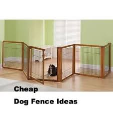 Cheap Dog Fence Ideas In 2020 Indoor Dog Fence Dog Fence Indoor Dog