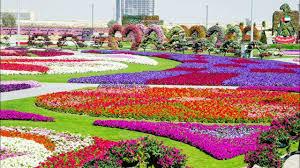 flower garden wallpapers n8m8o74 jpg