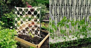 4 Unique Diy Crochet Trellis Ideas For Garden Balcony Garden Web