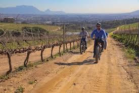 cape town e bike wineland tour half