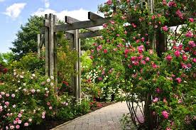 27 super cool backyard garden ideas