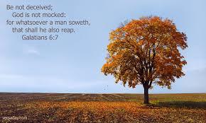 Great Verses of the Bible: Galatians 6:7-8 | ThePreachersWord
