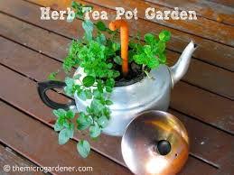 grow your own herb tea garden the