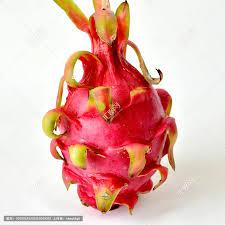 火龙果,果实,植物花草,摄影,汇图网www.huitu.com