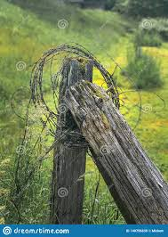 Old Fence Post With Barbed Wire Stock Photo Image Of Broken Barricade 140756830