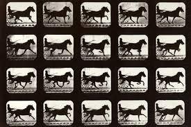 BBC - Photography - Genius of Photography - Gallery - Eadweard Muybridge