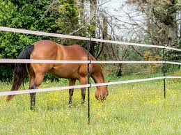 Horse Safe Gallagher Insulated Line Posts Quickly Fitted The Bill For Peace Of Mind