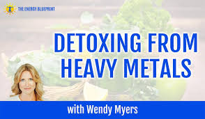 Detoxing From Heavy Metals with Wendy Myers - The Energy Blueprint