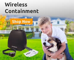 Wireless Dog Fence 2020 Top Consumer Picks Expert Unbiased Reviews