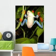 Red Eyed Tree Frog Wall Decal 2 Wallmonkeys Com