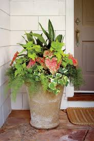 heat tolerant container gardens for