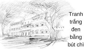 Nghệ thuật vẽ tranh trắng đen bằng bút chì - Jolla.vn