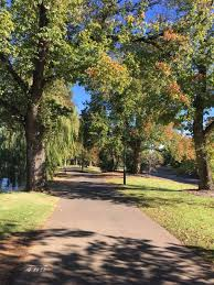 Autumn colour in our region | Your photos | Bendigo Advertiser | Bendigo,  VIC