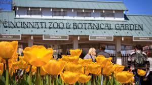 tunes blooms at the cincinnati zoo