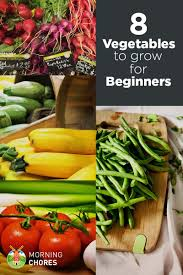 8 easiest vegetables to grow even if