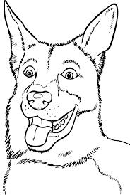 Honden Kleurplaat Dieren Kleurplaten Hond Tekeningen Kleurplaten