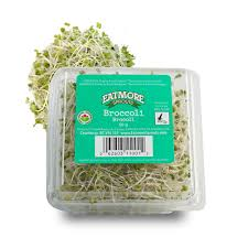 broccoli sprouts eatmore sprouts