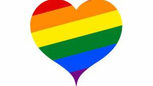 Afbeeldingsresultaat voor gay pride 2020