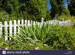 White Wooden Picket Fence In Front Of A Flower Bed In A Landscaped Stock Photo Alamy