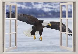 Alaskan Bald Eagle Wall Sticker 3d Window Bird Wall Decal For Etsy