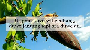 kata lucu bahasa jawa fb quotes hd