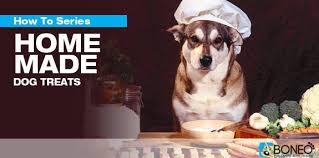 homemade dog treats boneo canine