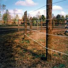 Raceline Flex Fence Coated Wire Ramm Rammfence Raceline Coatedwire Flexfence Horse Horses Equine Equestrian Horse Fencing Horse Stables Design Horses