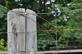 Free Images Tree Branch Fence Post Wood Farm Leaf Old Rustic Rough Wooden Man Made Object Outdoor Structure Wire Fencing Home Fencing 3216x2136 608787 Free Stock Photos Pxhere