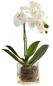 faux orchid in glass vase white