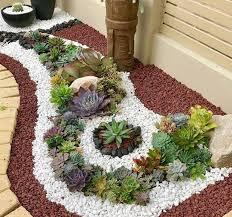 garden succulent landscapes