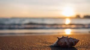 ✩ quotes tentang pantai inggris dan artinya untuk caption ig