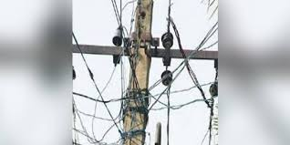 40 Year Old Man Dies As He Comes Into Contact With Illegal Electric Fence In Tamil Nadu The New Indian Express