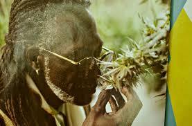 Senators Hold Positive Nelson's Nomination To Medicinal Marijuana Board