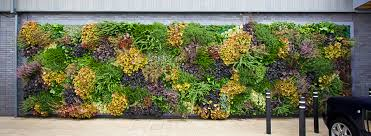 living wall archives page 4 of 5
