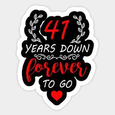 41st anniversary shirt 41 years down